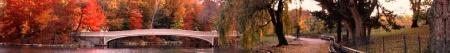 Pirene's Fountain