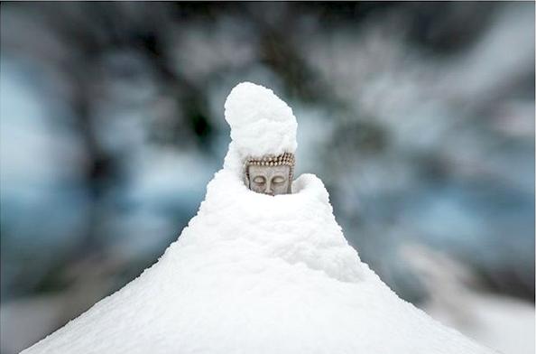 Toby's Snow Buddha
